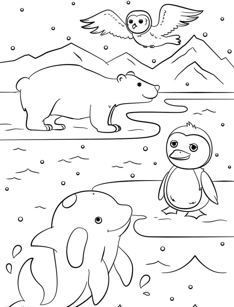 winter animal coloring pages Winter Animals Coloring Pages | Coloring Pages ideas | Coloring  winter animal coloring pages