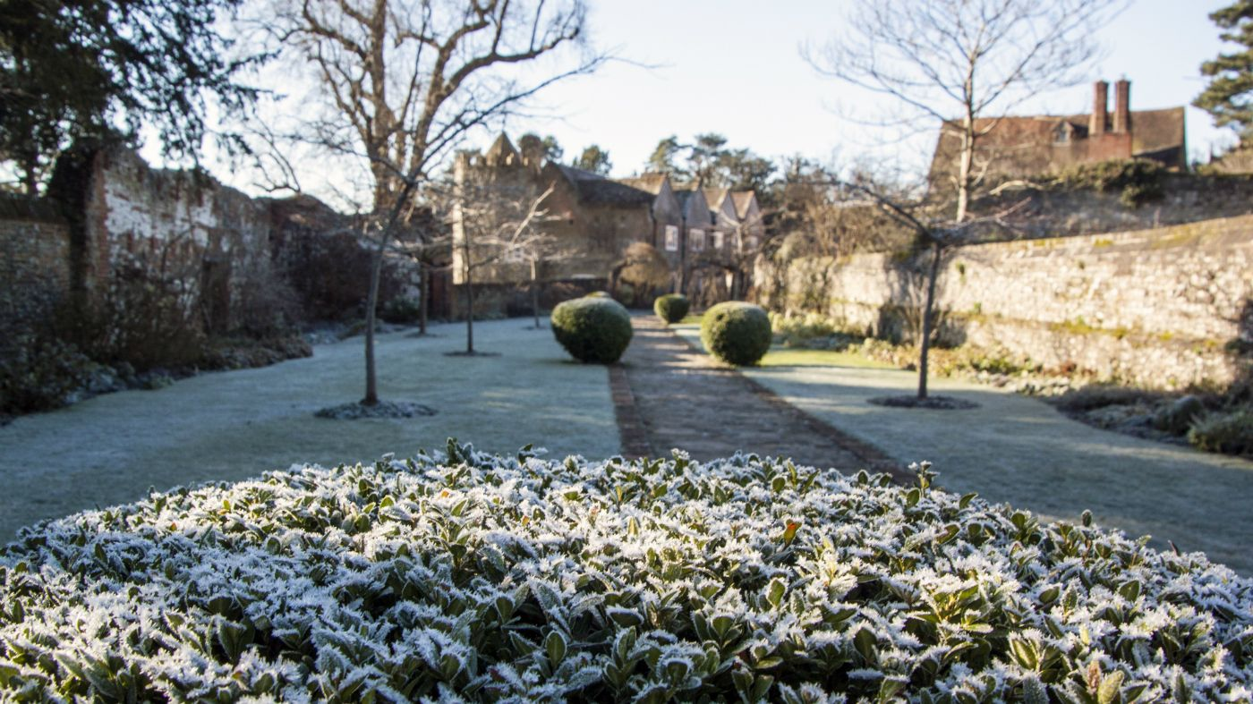cherry garden in winter at greys court oxfordshire nt image