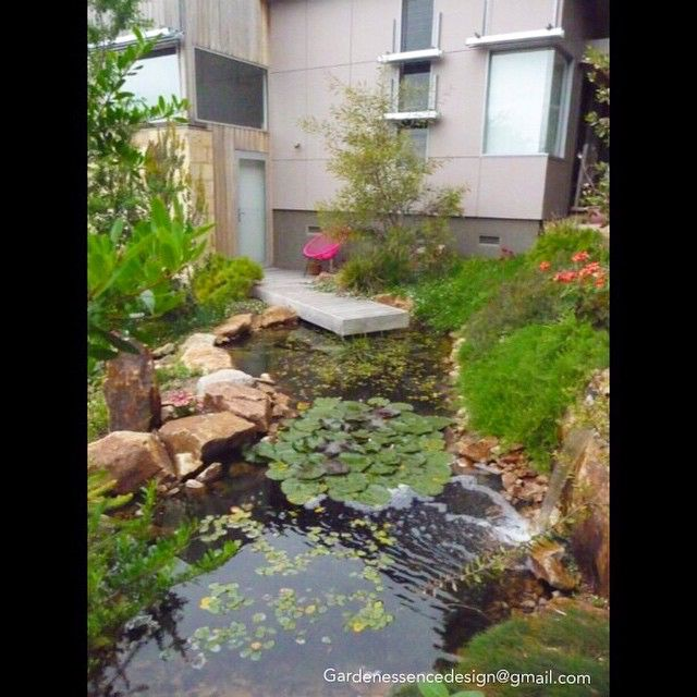 This Natural Looking Pond Blends Well With The Landscape Design By Wendy Clarke Sorrento Vic Gardendesignfest2 Landscape Design Garden Design Water Features