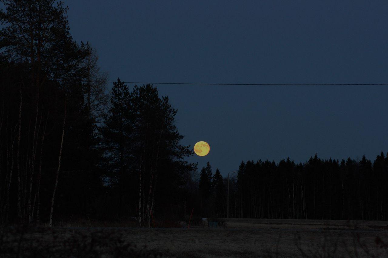 Täysi kuu komeena nousemassa.
