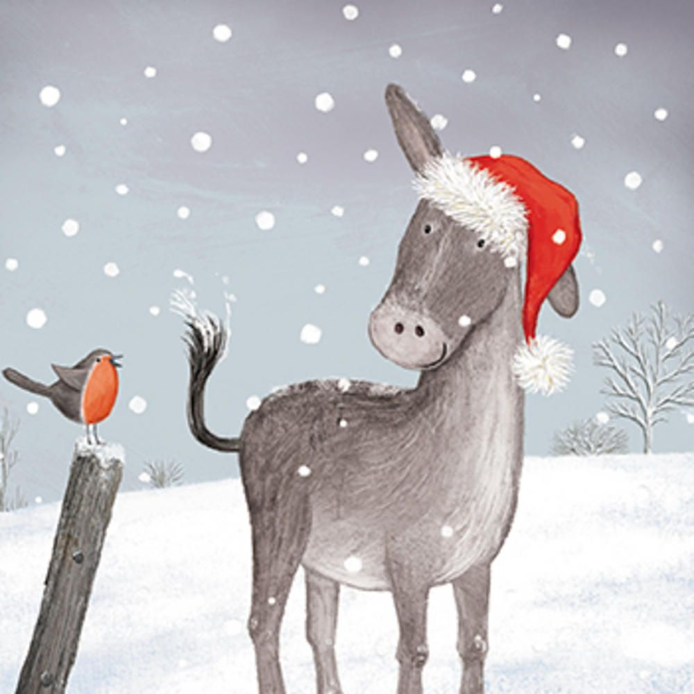 Box of 20 Donkey Stroke Association Charity Christmas Card | Cards ...