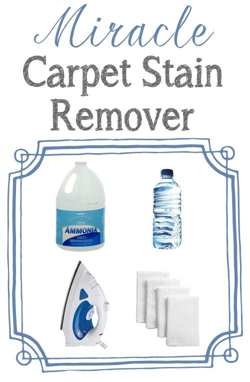This Is The Best Way To Remove Tough Carpet Stains One
