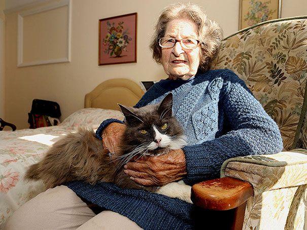 Carol Mello: Gata rastreia sua dona até encontra-la em um lar de idosos