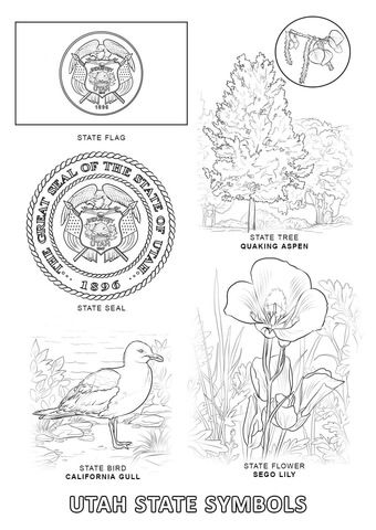 Utah State Symbols Coloring Page Free Printable Coloring Pages