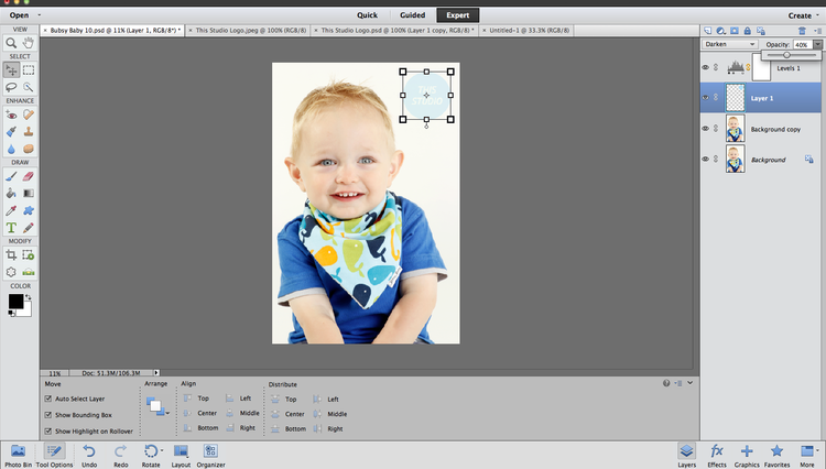 How to insert a logo or watermark as a new layer on