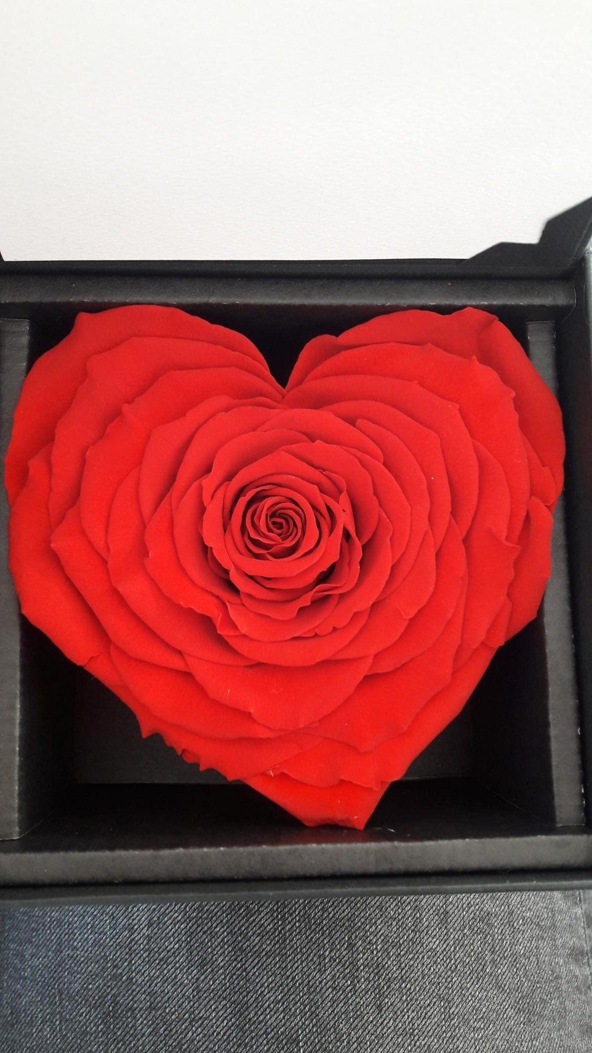 Rose Eternelle En Forme De Cœur Dans Ecrin Noir Ou Boite Ajouree