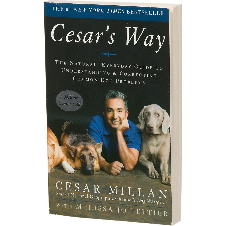 Cesar S Way By Cesar Millan Cesar Millan Dog Books Dog Whisperer