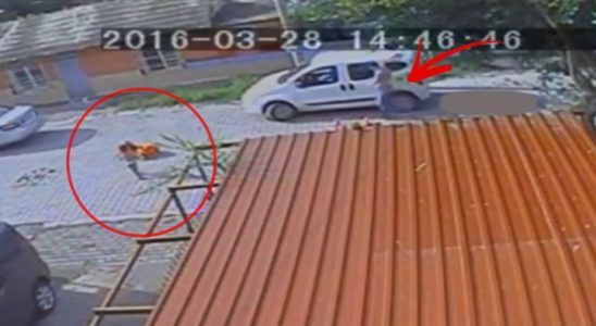 Toddler run over by car miraculously SURVIVES!!   Credit: LPE360 #news #alternativenews