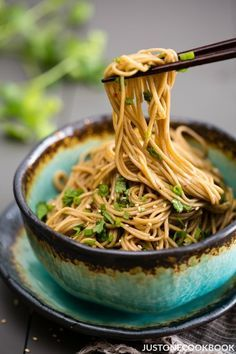 Soba Noodle Salad - chilled or at room temperature this Soba Noodle Salad tossed in a honey-soy dressing is exactly what you need for a quick light meal. #sobanoodlerecipe #coldnoodlerecipes #easynoodlerecipes #asiannoodles #summernoodlesalad | Easy Japanese Recipes at JustOneCookbook.com