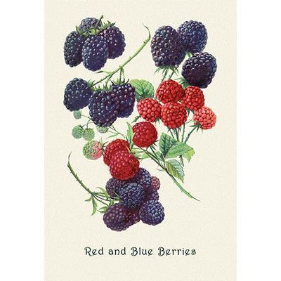 """Buyenlarge Berries Painting Print Size: 42"""" H x 28"""" W x 1.5"""" D"""
