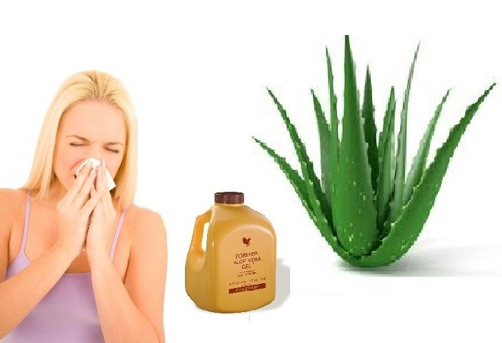 How To Use Aloe Vera For Allergies With Images Allergies Aloe