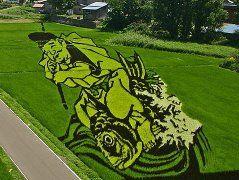 (99) Одноклассники картины на рисовых полях . Япония