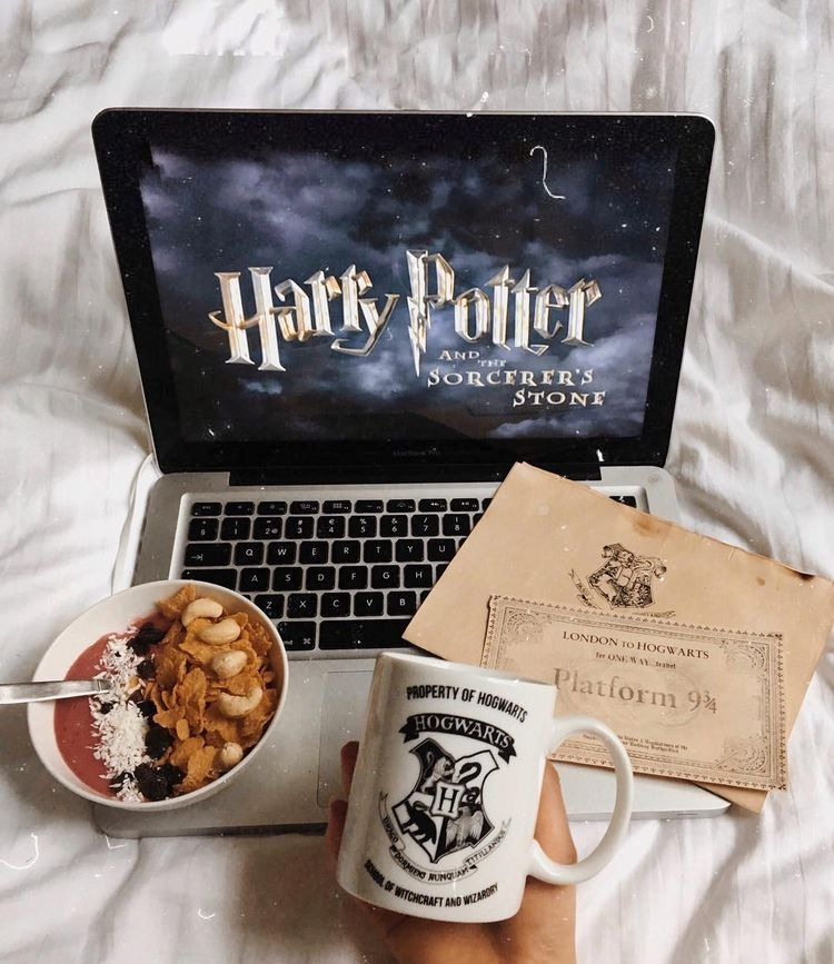 Netflix And Chill in 2020 Harry potter aesthetic, Harry