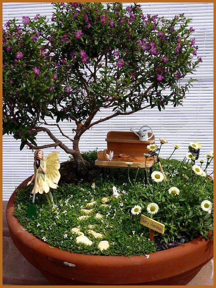 Fata Fioritura - # Alberi # Fioritura #Feenh / #alberi #Fata #Feenh #fioritura