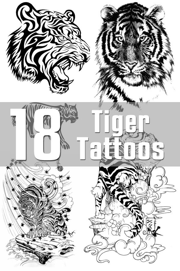 Tiger Tattoo Designs Tiger Tattoo Design Tiger Tattoo Tribal Tiger Tattoo