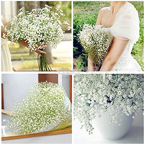 BESTIM INCUK FASHION 10 Pcs Gypsophila Artificial Fake Beautiful Flower Home Wedding HuntGold http://www.amazon.co.uk/dp/B00N9VWYPQ/ref=cm_sw_r_pi_dp_jF0Yvb1S0NNF0