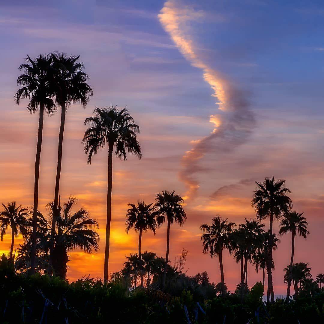 Josh Kizziar Photography On Instagram Palm Springs Vibes Palmsprings California Californiadesert Palm Tree Sunset Palm Springs Photography Palm Springs Palm trees sunset horizon sky clouds