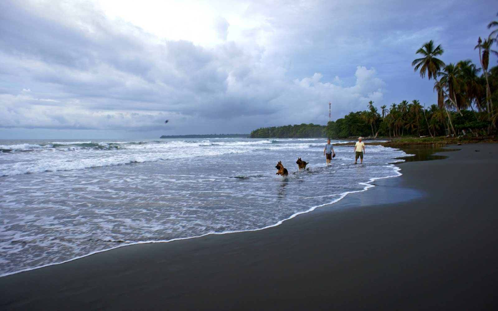 Where On Earth To Find Rare Black Sand Beaches  Black -3349