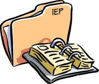 IEP organization kit