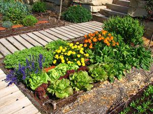 Huerta en jardin peque o casa web blusas vestidos for Como hacer un jardin pequeno