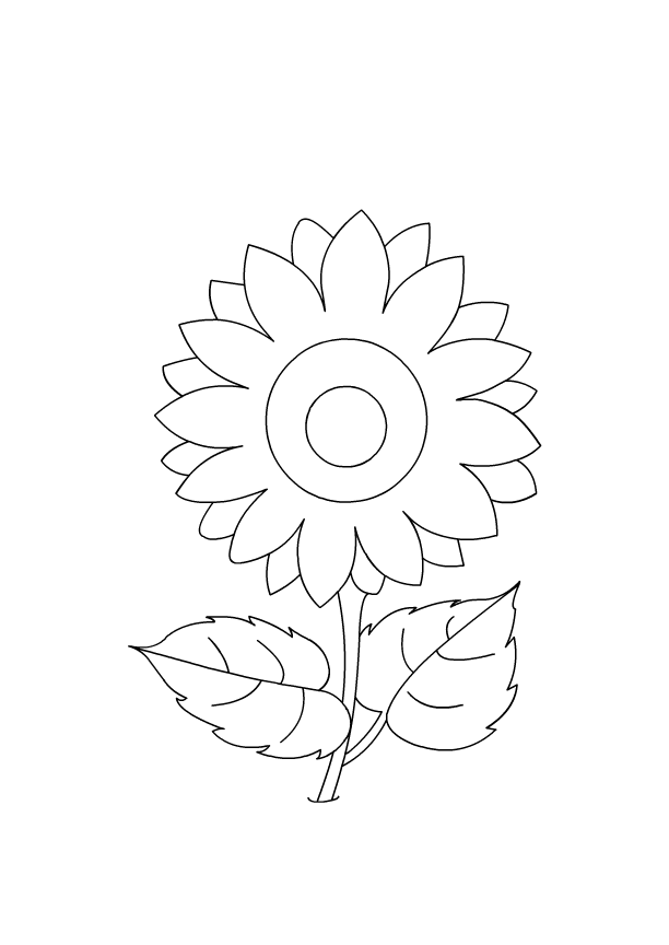 different flower pictures to color Craft activities for