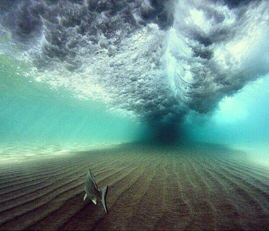 Una ola vista desde abajo.., impresiona, verdad? ;)