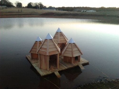 pond decor - floating duck house | ducks & geese | pinterest | duck