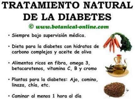 plantas medicinales contra el tratamiento de la diabetes