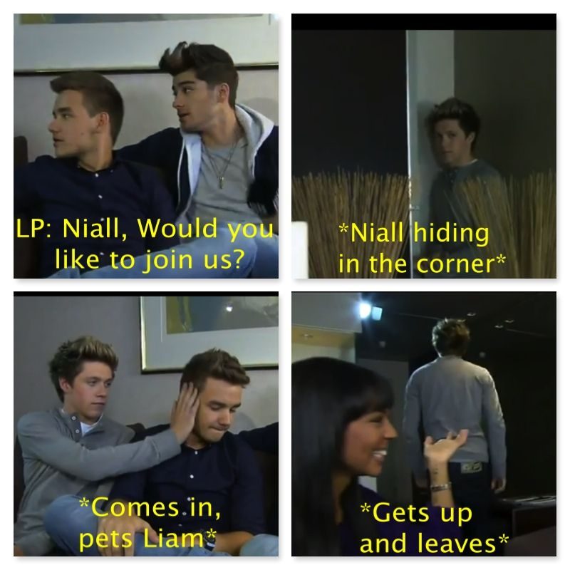 I just don't understand Niall