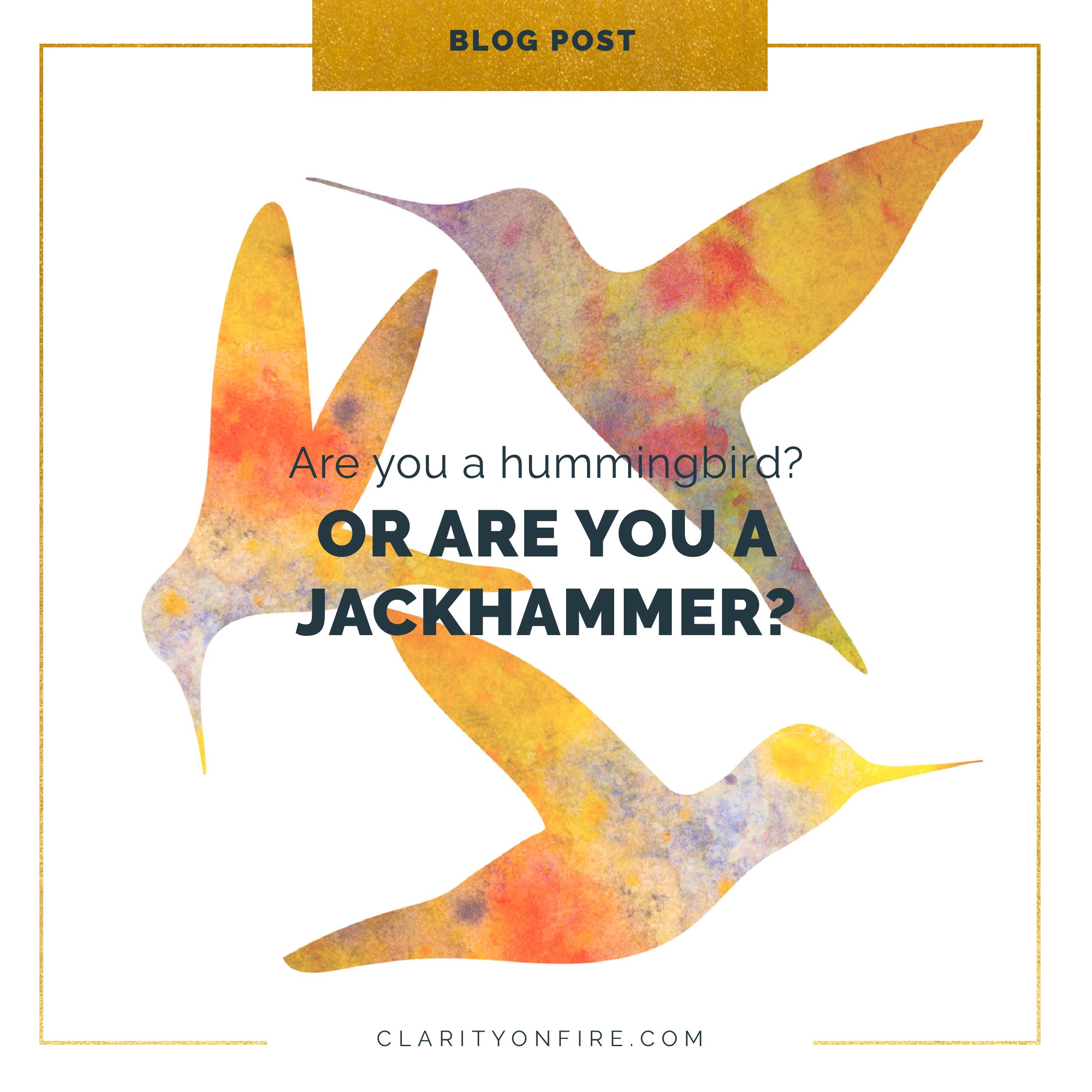 Are You A Hummingbird Or A Jackhammer Clarity On Fire Hummingbird Speak Life Wisdom Quotes