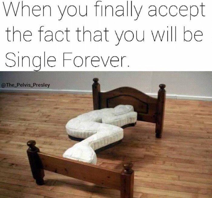 Single Forever Meme Funny Single Memes Single Memes Funny Memes About Life