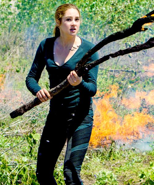 Tris facing the birds that are out of control