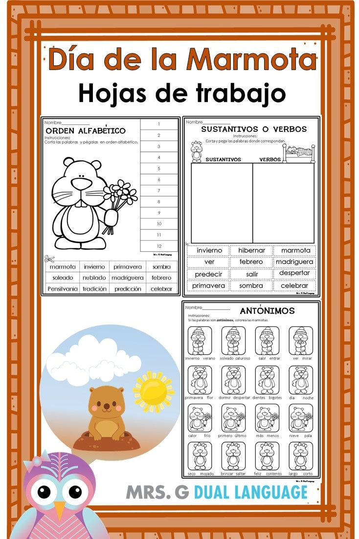 Free Spanish worksheets for Groundhog Day. Dia de la marmota | My ...