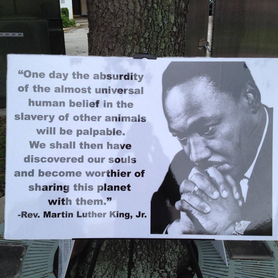 Animal Abuse Quotes By Famous People: Animal Quote By Martin Luther King, Jr.