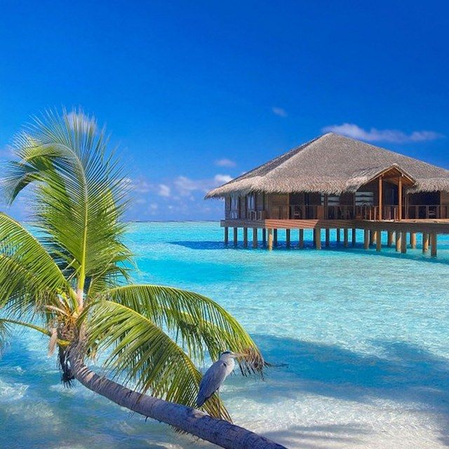 Мальдивы и море удовольствия