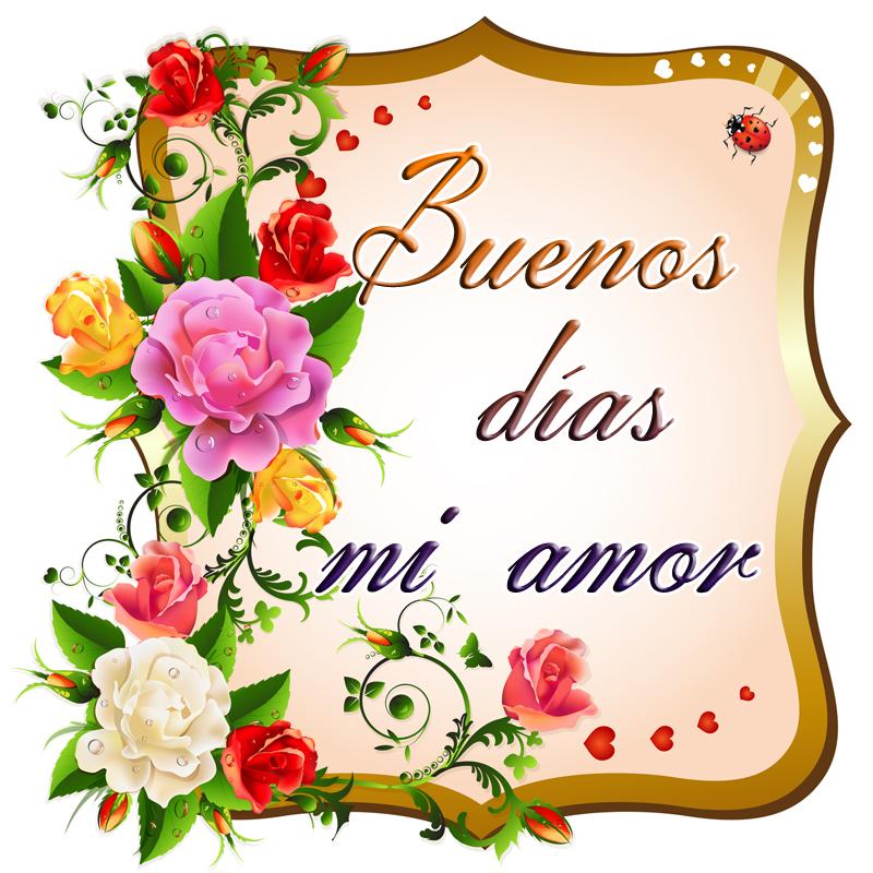 19 Imagenes De Buenos Dias Mi Amor Buenos Dias Amor Mensajes