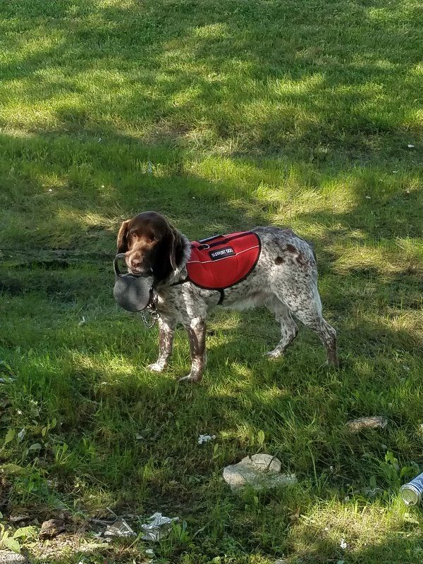 Register your Service Dog and Emotional Support Animal