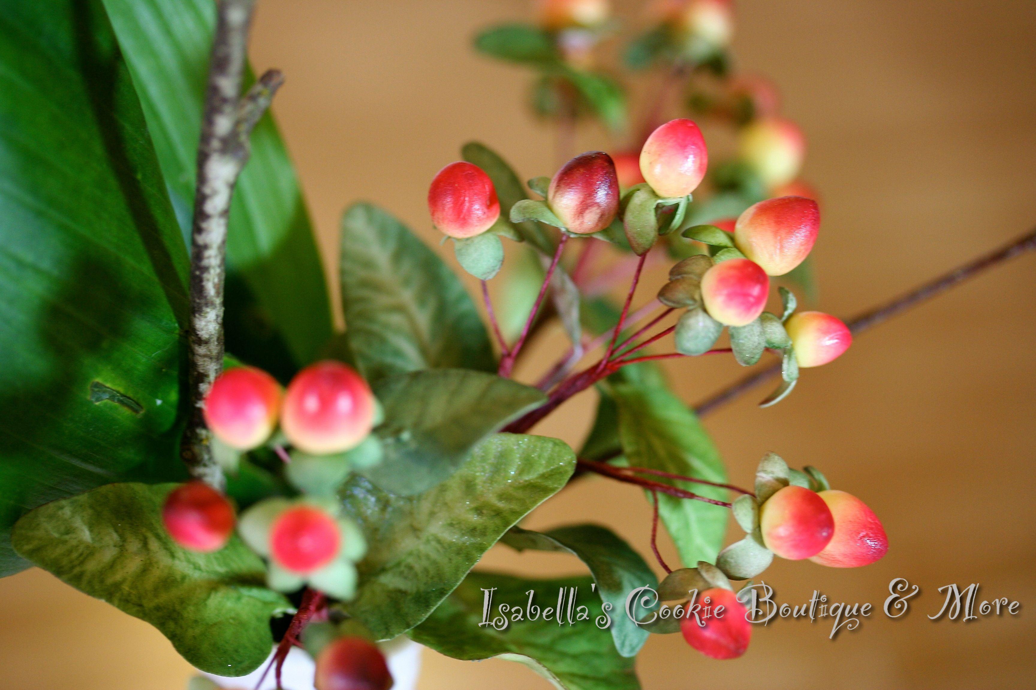 Gum Paste Hypericum Berry Gum Paste Flowers Pinterest Sugar