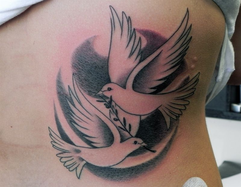 dove with olive branch tattoo screenshots pinterest olive rh pinterest co uk dove with olive branch tattoo designs Dove Tattoo Meaning