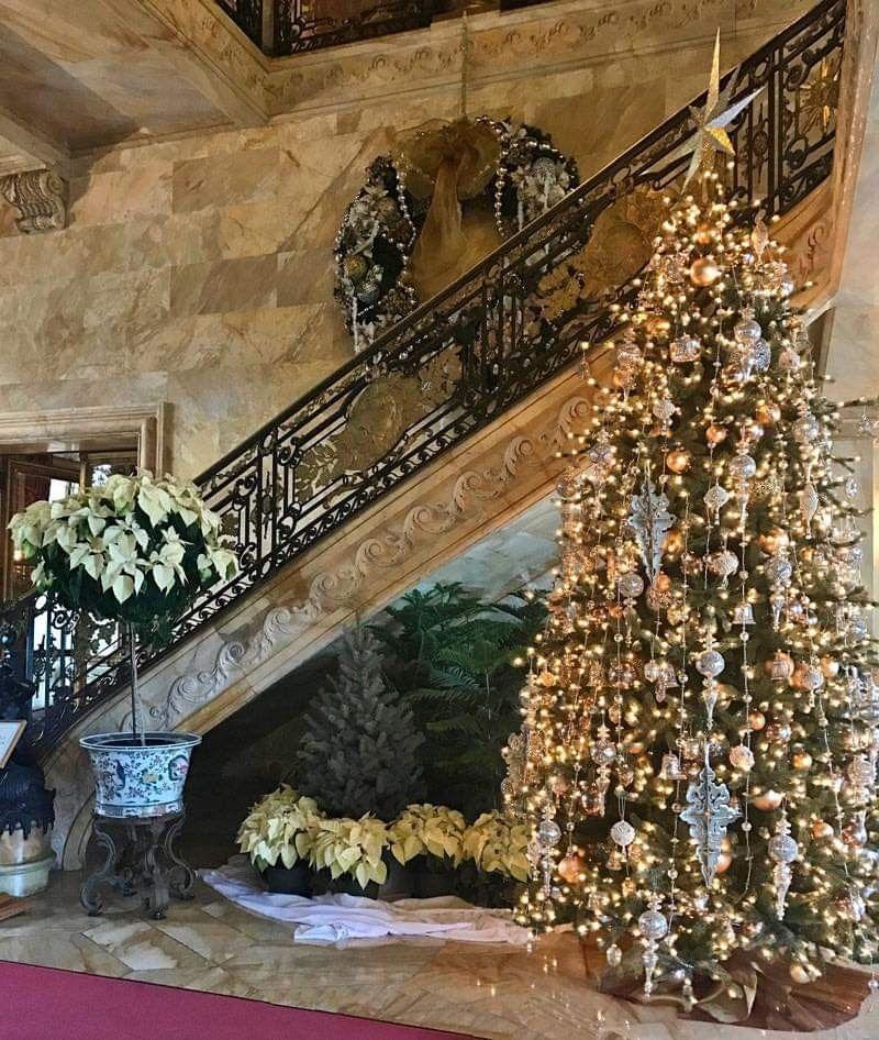 Pin by Jewel Greenwaldt on Christmas Trees Seasonal