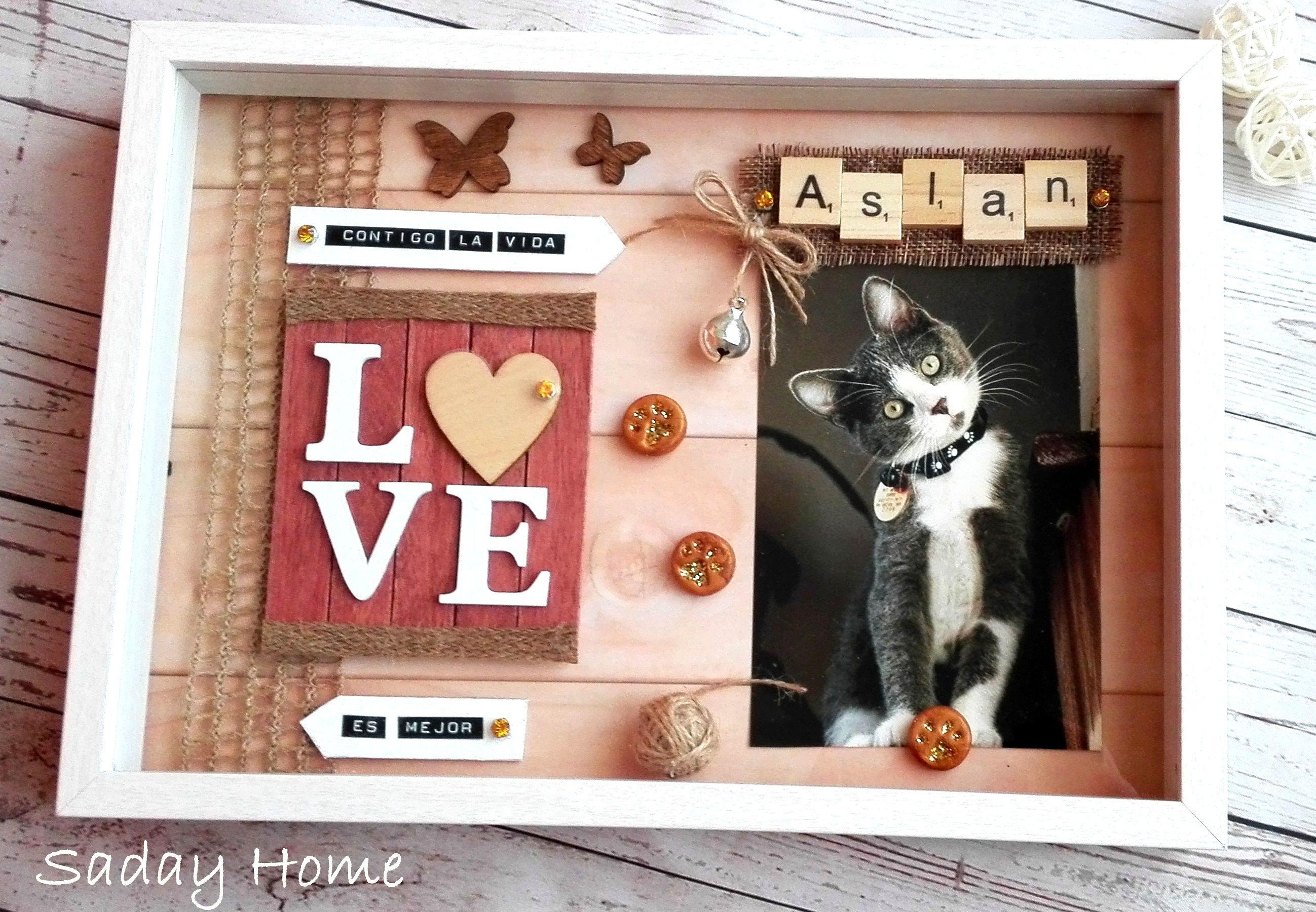 Mascotas Marcos Personalizados Regalos Gatos Regalos