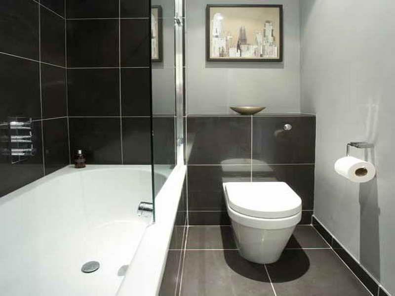BathroomDesignIdeasSmallBathroomsPictureswithtissuejpg 800
