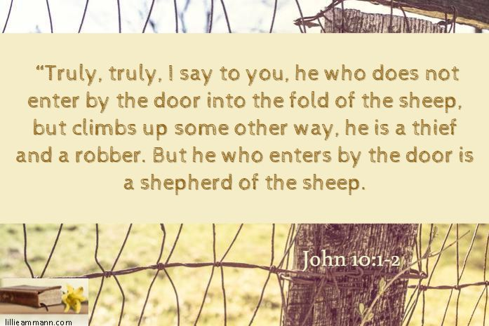 Truly, truly, I say to you, he who does not enter by the door into the fold  of the sheep, but climbs up … | New american standard bible, The good  shepherd, Sayings