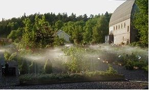 Vegge Gård - gartneri og hagesenter - Hjem