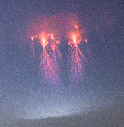 JELLYFISH SPRITES OVER OKLAHOMA SpaceWeather com -- News and