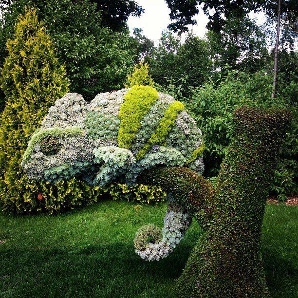 Chameleon Plant Sculpture At The Montreal Botanical Garden