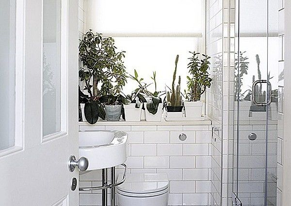 Bathroom Style Trends Bathroom Plant Ideas Fascinating 9X5 Bathroom Style