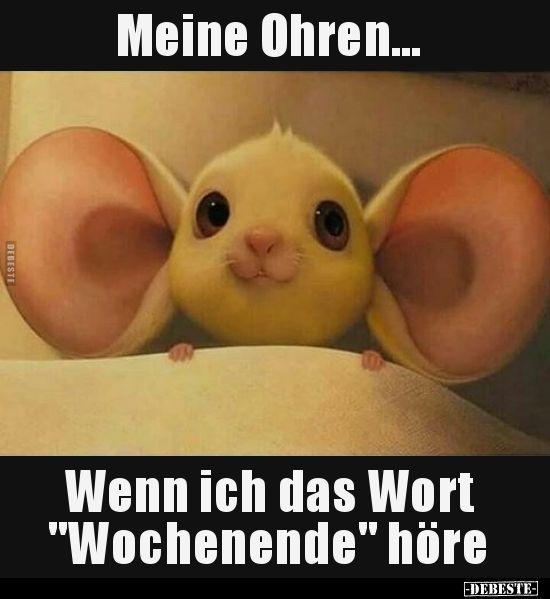 Ohren lustig