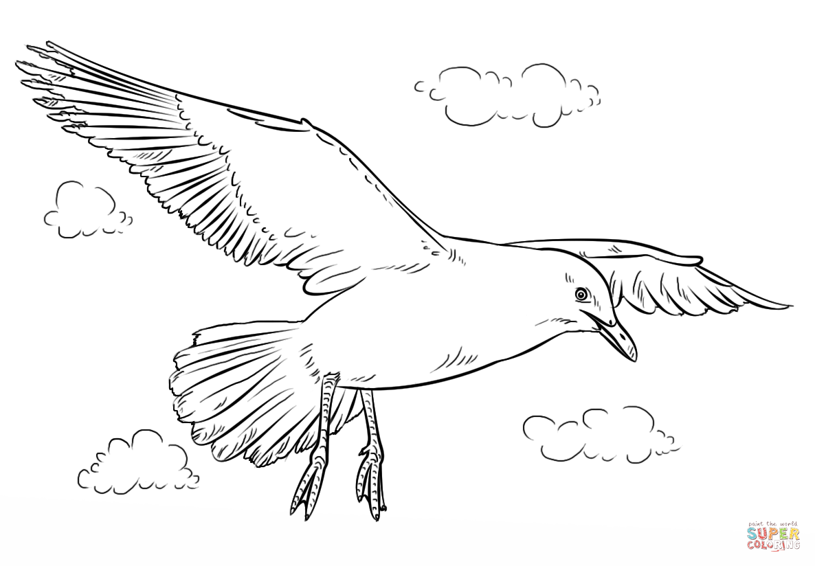 Seagull In Flight Coloring Page From Seagulls Category Select From 28060 Printable Crafts Of Cartoons Bird Drawings Animal Drawings Flower Drawing Tutorials