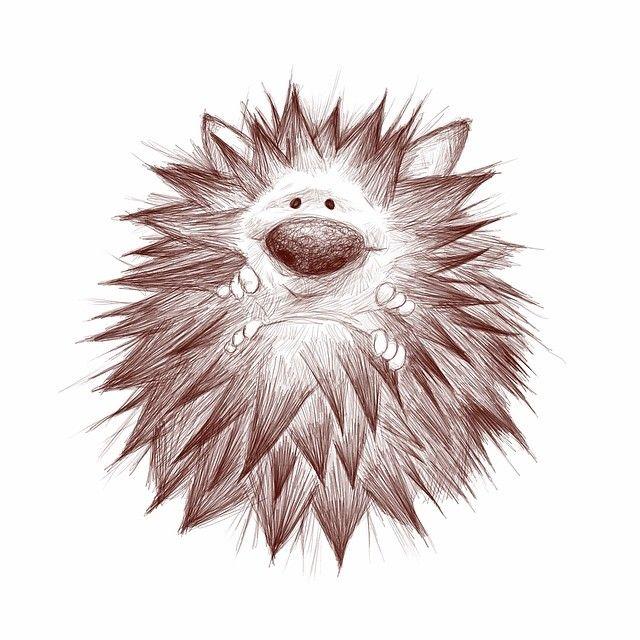 Love This Hedgehog Pencil Draw